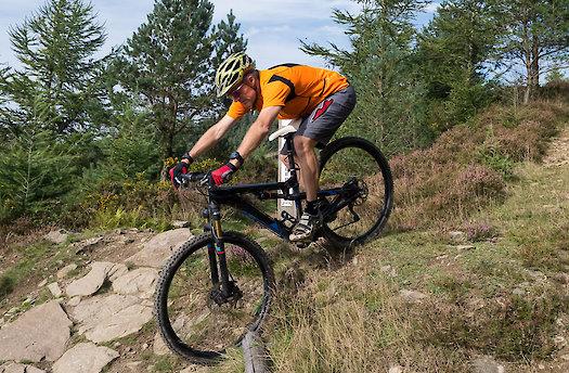 Mountainbike im Bayerischen Wald